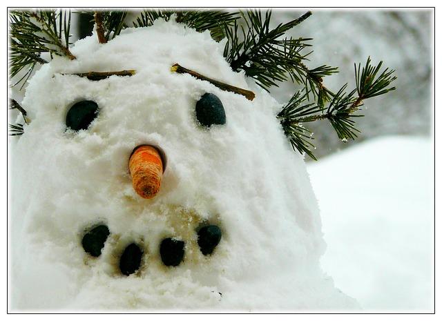 snow-man-250070_640